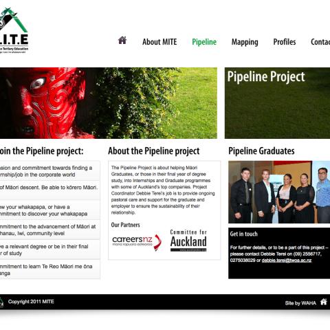 MITE-Pipeline